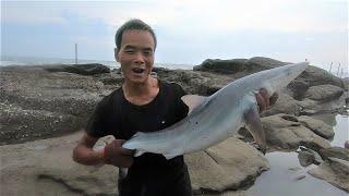 小囿抽超级大水坑遇大鲨鱼,还没抽干就抓到各种值钱货,直赚645