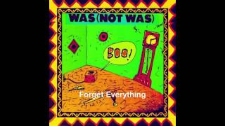 Forget Everything — Was (Not Was)