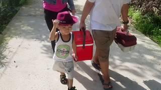 Tin và anh Hai đi câu cá và hái nhãn | Kids Toy Media