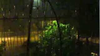 preview picture of video 'Noite de chuva na Beira'