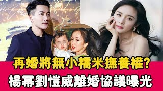 Remarriage will be no small glutinous rice custody Yang Mi Liu Weiwei divorce agreement exposure,