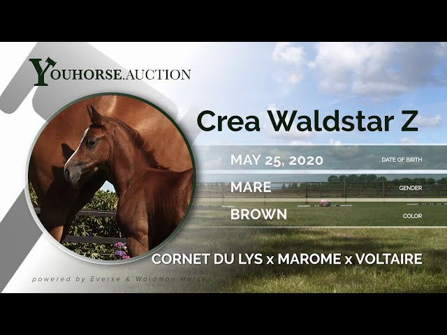 Crea Waldstar Z