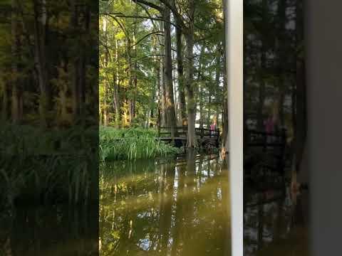 Beginning of pontoon tour given by Reelfoot Lake at Visitors Center
