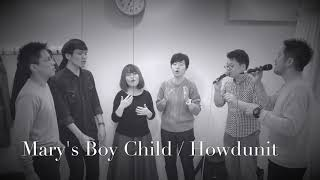 Mary's Boy Child/  Howdunit
