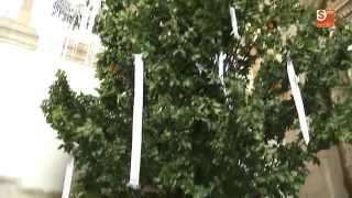 preview picture of video 'OFRENDA DEL RAMO A LA VIRGEN EN VILLAMAYOR'