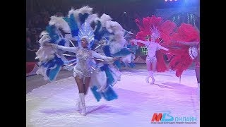 Волгоградский цирк и цирк Никулина приглашают зрителей на «Елку в цирке»