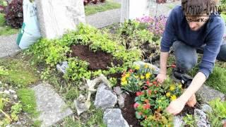 Anleitung: Grabbepflanzung Für Sommer Selber Machen