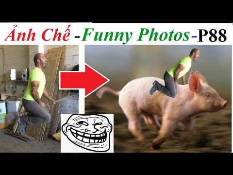 💥Ảnh Chế  – Funny Photos (P 88) Photoshop Trolls, Nhờ cộng đồng mạng ghép ảnh và cái kết