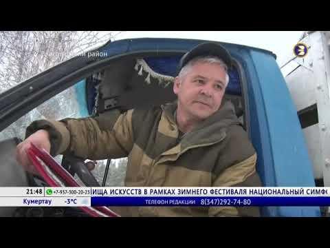 Срубил – получи штраф: в Башкирии лесоводы рассказали, где взять ель для Нового года