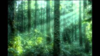 リラックスビデオ~partⅡ森林浴~relaxvideoForestbathⅡ