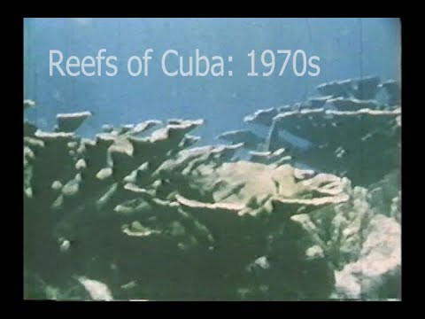 , title : 'Reefs of the Past: Cuba, 1970s'