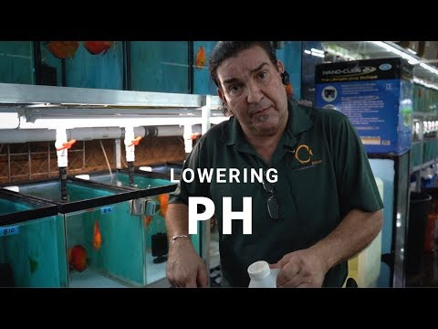HOW TO: lower PH for your Tropical Fish Tank