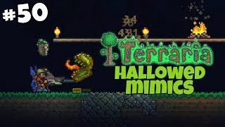 Hallowed Mimics and the Daedalus Stormbow - Terraria Gameplay - Part 50