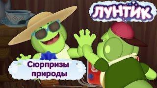 Лунтик и его друзья - Сюрпризы природы. Лето 2017