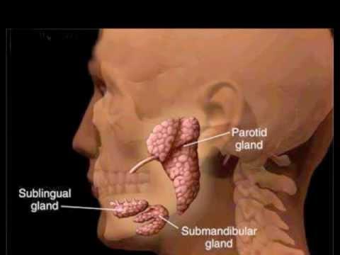 Der heftige Schmerz in der Kehle und dem Hals