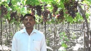 Hirve Ratnakar Bhor Bullet