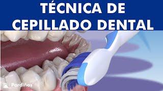 La mejor técnica para CEPILLARSE los dientes - Bass Modificada ©