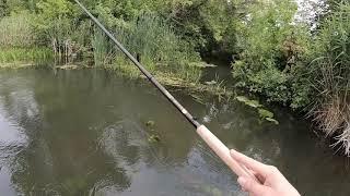 Река струга рыбалка тульская область