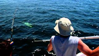 Giant Bluefin Tuna - July 2, 2011