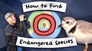 ENDANGERED SPECIES - How to find them near you!!!