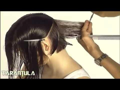 Beste Frisur für Frauen in 2016 Fabelhafte Frauen-Haarschnitt Haircutting Lektion