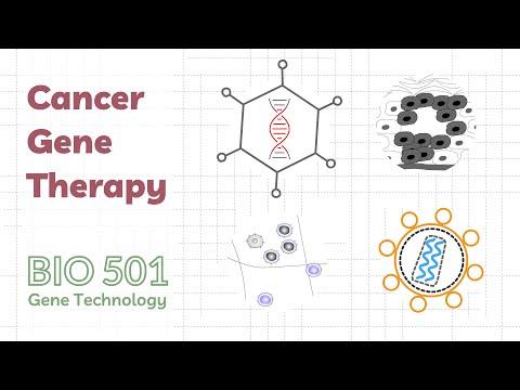 Oncologie condilom