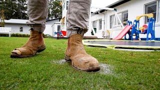 Lots of rain lately?   Water & drainage issues - How to treat & prevent fungal disease in your lawn