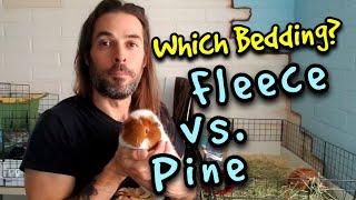 What is the Best Guinea Pig Bedding? Fleece vs Pine