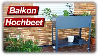 Hochbeet für Balkon & Terrasse aufbauen, befüllen und bepflanzen