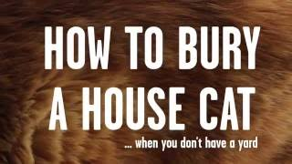 HOW TO BURY A HOUSE CAT Storyhive Pitch