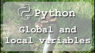 #12 Learn to use Python global and local variables