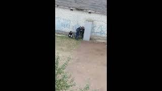 В Новоюжном районе засняли избиение молодого парня