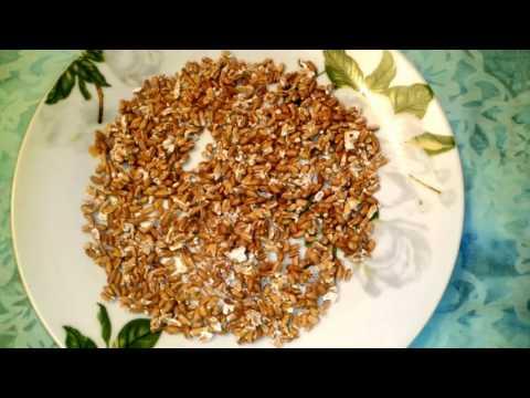 Лечить сахарный диабет лавровый лист