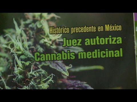 Video: México aprueba uso medicinal de la marihuana