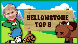 Yellowstone Top 5 Attractions for Kids   Travel with Kids 2018