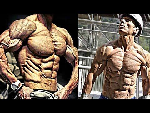La masse lensemble dans le bodybuilding