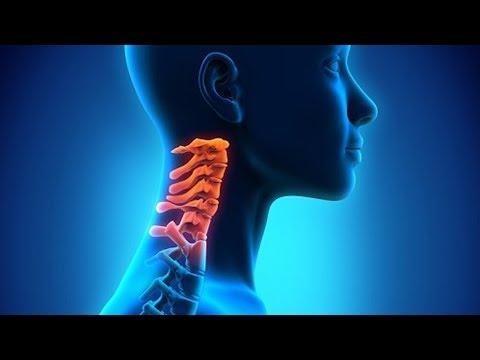 Schmerzen im Zusammenhang mit Geschlechtsorganen geben die gesamten Rücken