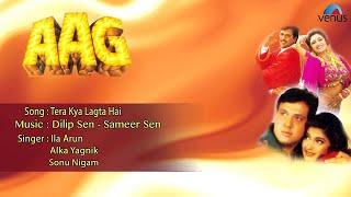 Aag  Tera Kya Lagta Hai Full Audio Song  Govinda Shilpa Shetty Sonali Bendre