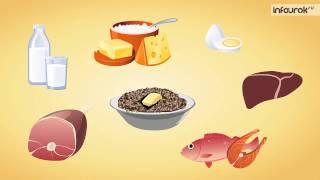 Биология (8 класс) - Витамины и их роль в организме человека