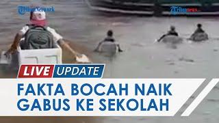 Fakta Video Viral Bocah SD Naik Styrofoam di OKI, Kepala SD Negeri 1 Kuala Dua Belas: Hanya Bermain