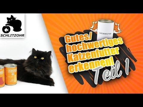 🔥Gutes Katzenfutter - hochwertiges Katzenfutter erkennen! Deklaration & Zusammensetzung verstehen