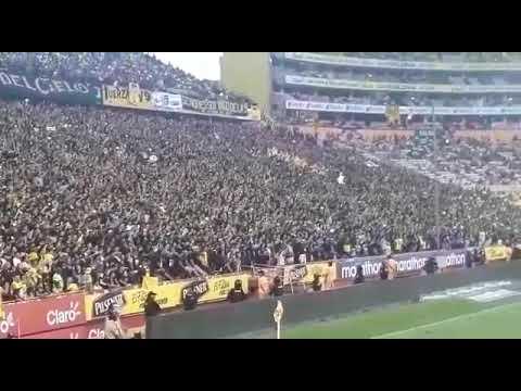 """FILIAL DEL CIELO AMARILLO ETERNO 🎗🕯"" Barra: Sur Oscura • Club: Barcelona Sporting Club"