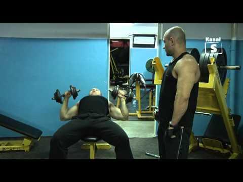 Posiadacze mięśnie pleców