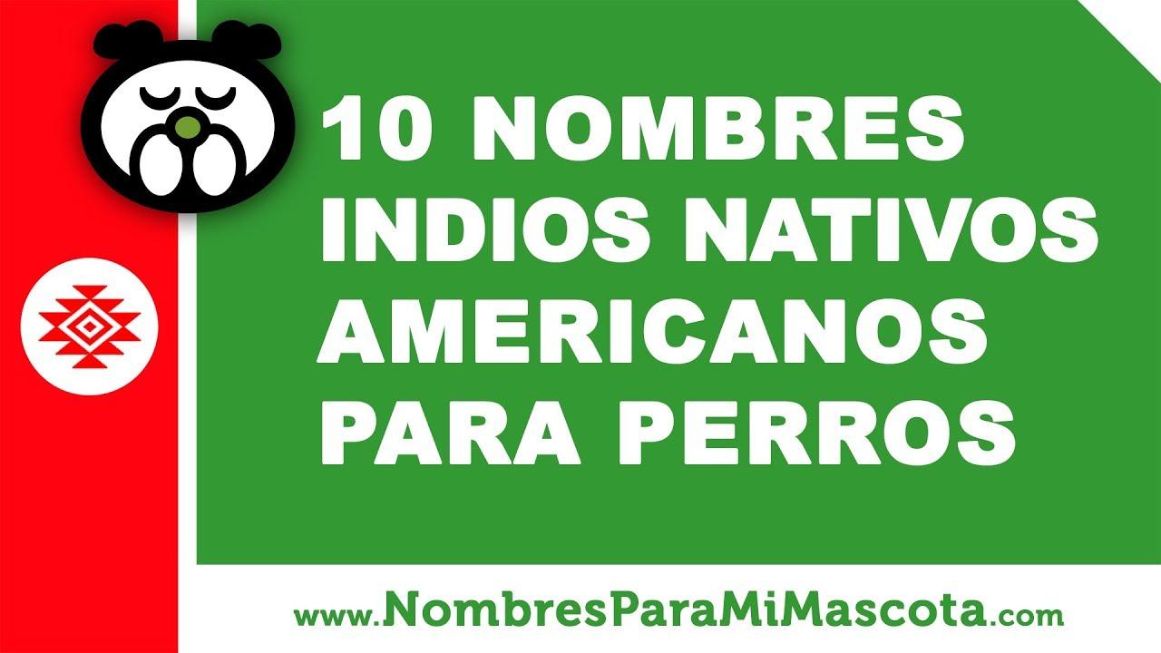 10 nombres indios nativos americanos para perros - mascotas - www.nombresparamimascota.com