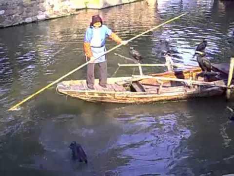 Pesca pagata dyurtyulyakh