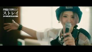 岸田教団&THE明星ロケッツ_ストレイ_MUSIC VIDEO_試聴映像