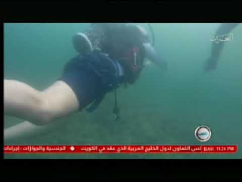 The General Security Officers Club organizes a diving course 4/12/2017