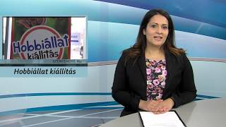 Szentendre MA / TV Szentendre / 2018.02.09.