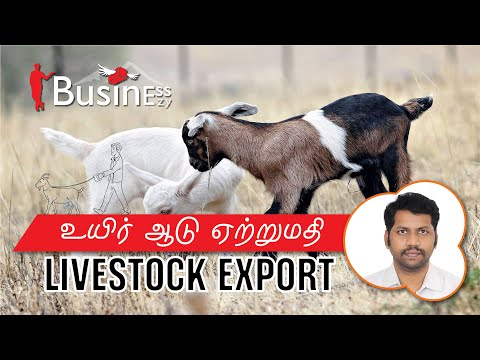 , title : 'உயிர் ஆடு ஏற்றுமதி//Livestock Export//export import business //HOW TO START EXPORT BUSINESS?