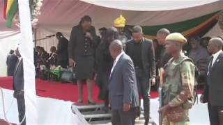 African leaders bid farewell to Mugabe